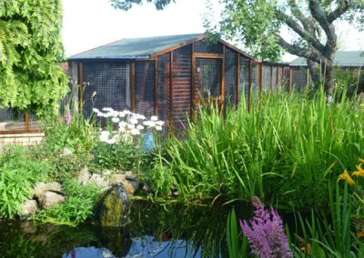 Cattery East Sussex single and double units pond 600